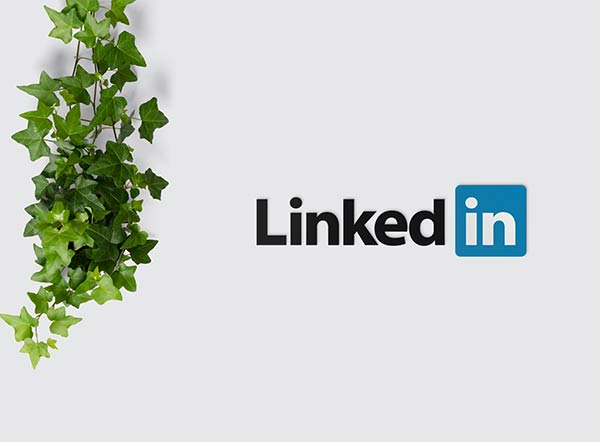 LinkedIn logo with leaves to the left